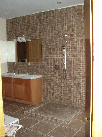 basement remodeling of Edison Park Illinois home remodeling and renovation project picture
